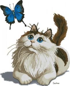 Схема Бабочка и кот
