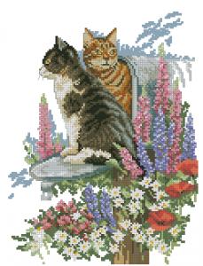 Схема Коты в почтовом ящике