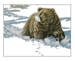 Схема Медведь