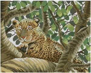 Схема Леопард на дереве