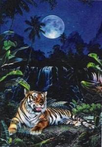Схема Тигр и водопад