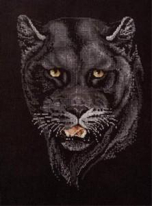 Схема Пантера