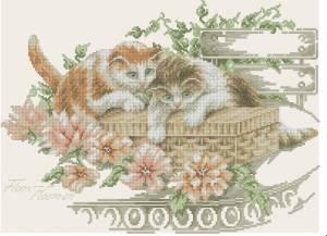 Схема Игра котят