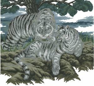 Схема Белые тигры