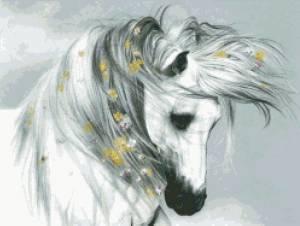Схема Белый конь