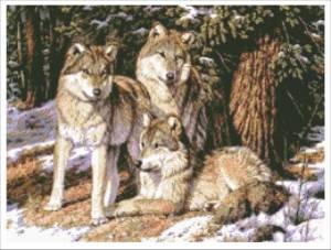 Схема Волки в лесу