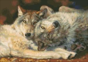 Схема Волчья пара