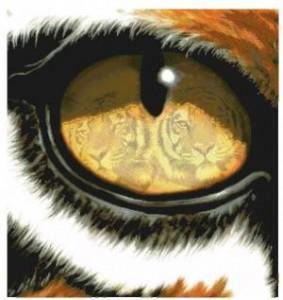 Схема Глаз тигра
