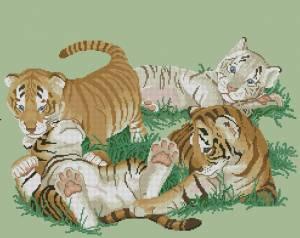 Схема Тигрята