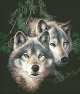Схема Два волка