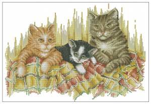 Схема Коты в одеяле