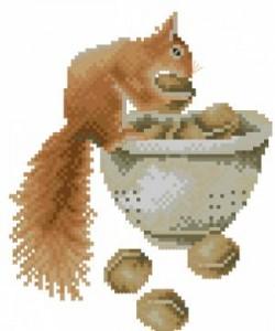 Схема Белка с орехами