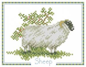 Схема Овца