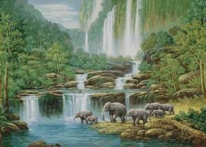 Схема Слоны