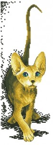 Схема Породистый котенок (белый фон)