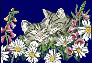 Схема Котята весной (Kitten In Spring)