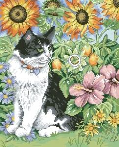 Схема Черно-белый кот