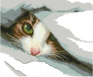 Схема Спрятался (котенок под одеялом)