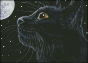 Схема Кошка (Moon and Stars)