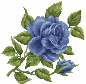 Схема Роза голубая