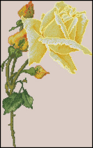 Схема Жёлтая роза