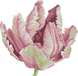 Схема Тюльпан / Tulip
