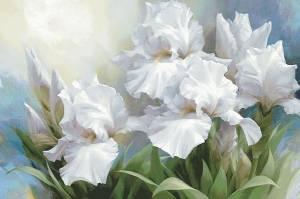 Схема Белые ирисы / White Irise Elegance II