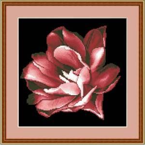 Схема Тюльпан