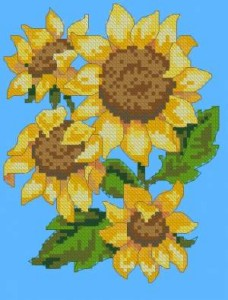 Схема Подсолнухи / Sunflower Drama