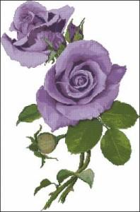 Схема Сиреневая роза