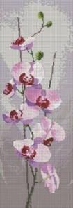 Схема Орхидеи панель / Orchid Panel