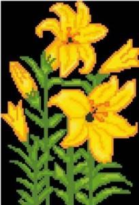 Схема Жёлтые лилии
