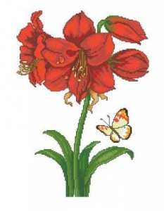 Схема Амарилис с бабочкой
