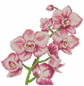 Схема Цветочное панно. Орхидея