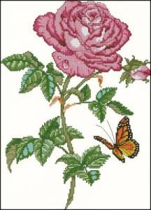 Схема Роза с бабочкой