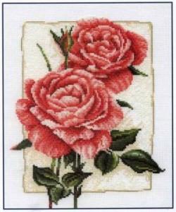 Схема Розы в цвету / Cottage Rose in Bloom