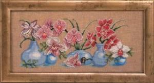 Схема Орхидеи (ассорти)