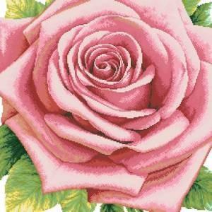 Схема Розовая роза