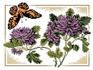 Схема Бабочка Кардинал