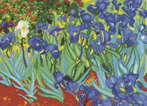 Схема Ирисы (Ван Гог)