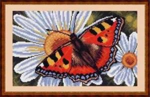 Схема Бабочка шоколадница на ромашках