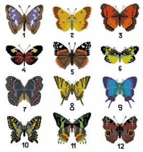 Схема 12 бабочек / Fluturi Susanna