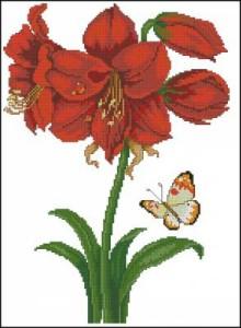 Схема Амариллис красный с бабочкой