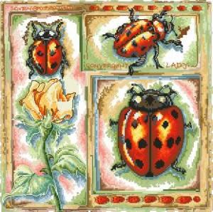 Схема Серия - насекомые (Божья коровка)