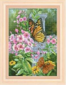 Схема Бабочки на флоксах