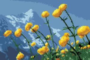 Схема Лютики в горах