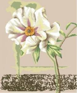 Схема Одинокий цветок
