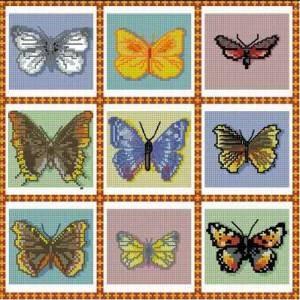 Схема Коллекция бабочек