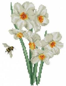 Схема Нарциссы и пчела