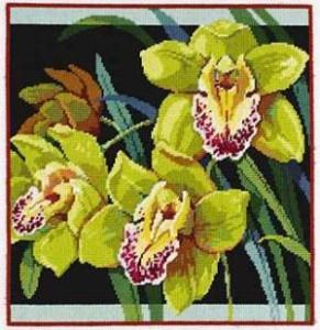 Схема Пестрые орхидеи